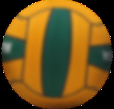 ef99de0a6 A bola de polo aquático pode ser tudo